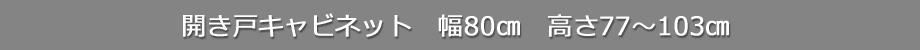 csd-t80-title