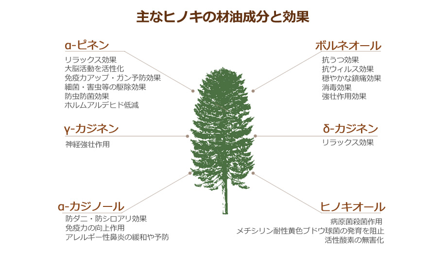ヒノキ成分表
